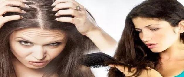 Hair Fall Tips : बाल झड़ने की समस्या से कैसे पाएं छुटकारा, जानिए 10 घरेलू उपाय