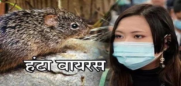 कोरोना वायरस के बाद चीन में मिला हंटा वायरस, जानिए क्या है हंटा वायरस