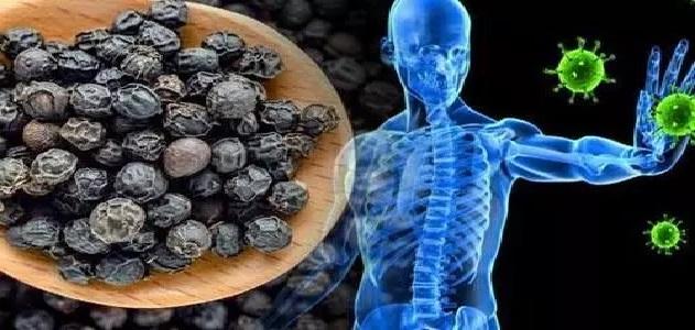 अगर रखना चाहते है इम्यूनिटी सिस्टम को स्ट्रांग, तो ऐसे खाएं काली मिर्च, जानिए इसके फायदे