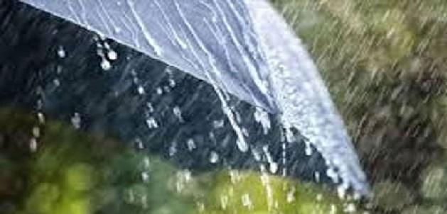 अब तक राज्य में 574.1 मिमी औसत वर्षा दर्ज, सभी जिलों में की गई इतनी वर्षा दर्ज