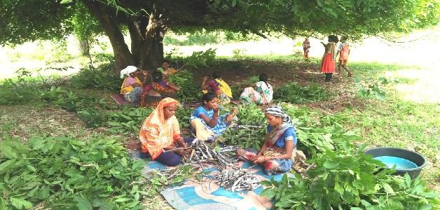 मनरेगा ने बदल दी किस्मत, लाख उत्पादन कर लाखों कमाने लगी ग्रामीण महिलाएं