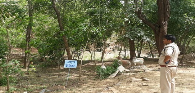 रीवा में बनाया गया नक्षत्र वाटिका, जहां नक्षत्रों के हिसाब से लगाए गए हैं पौधे