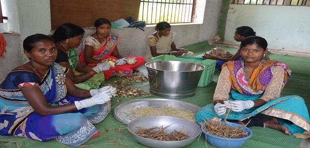 दुगली लघु वनोपज प्रसंस्करण केन्द्र से वनवासियों को हुनर के साथ मिला स्वरोजगार
