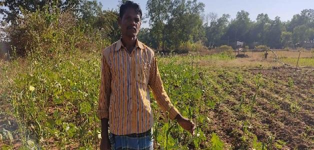 किसान महादेव ने शासकीय योजना का लाभ लेकर किया आधुनिक कृषि