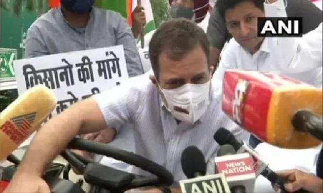 राहुल गांधी ट्रैक्टर चलाकर संसद पहुंचे, कहा- मोदी सरकार को नए कृषि क़ानूनों को वापस लेना पड़ेगा