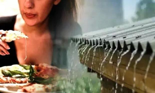 बारिश के मौसम में भूलकर भी ना खाएं ये 5 चीजें, वरना बढ़ सकती है आपकी परेशानियां