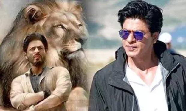 शाहरुख की अपकमिंग फिल्म का नाम सामने आते ही क्यों सोशल मीडिया पर #BoycottSRK कर रहा ट्रेंड